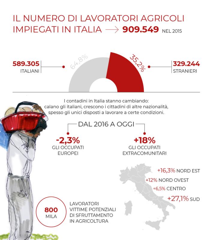 Infographic /